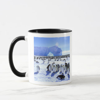 南極大陸の南極半島、Weddellの海、5 マグカップ