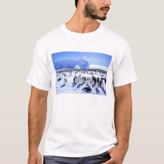 南極大陸の南極半島、Weddellの海、5 Tシャツ