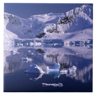 南極大陸の楽園湾 タイル