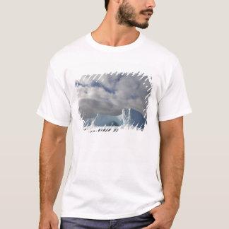 南極大陸のBransfieldの海峡、午後の太陽 Tシャツ