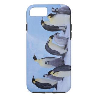 南極大陸のEmporerのペンギン((コウテイペンギン属 iPhone 8/7ケース