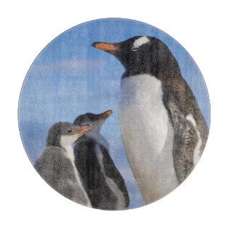 南極大陸のNekoの入江(港)。 Gentooのペンギン2 カッティングボード