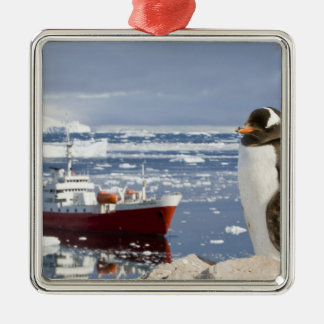 南極大陸のNekoの入江(港)。 Gentooのペンギン メタルオーナメント
