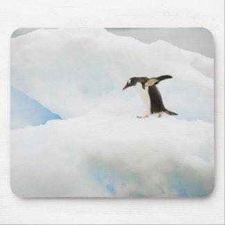 南極大陸のNeko港。 gentooのペンギン マウスパッド