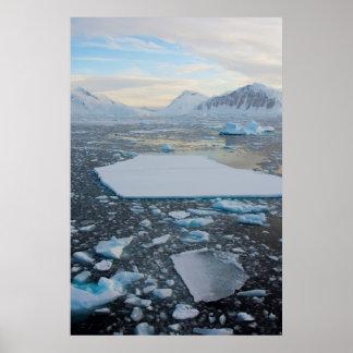 南極大陸。 アデレードの島の近く。 切落し2 ポスター