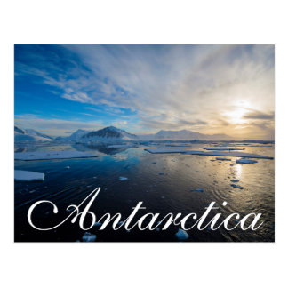 南極大陸。 アデレードの島の近く。 切落し2 ポストカード