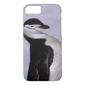 南極大陸。 Chinstrapのペンギン iPhone 8/7ケース