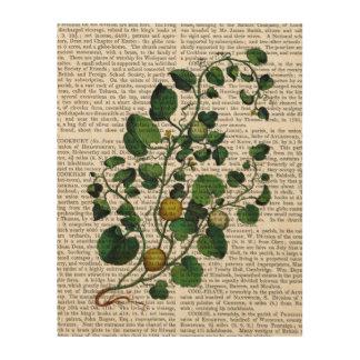 南瓜つる植物4 ウッドウォールアート