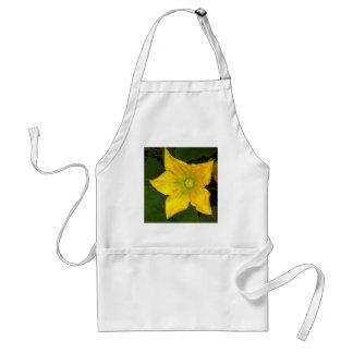 南瓜の花 スタンダードエプロン
