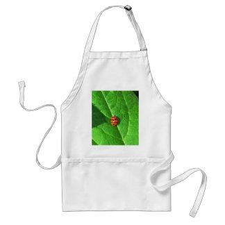 南瓜の葉のてんとう虫 スタンダードエプロン