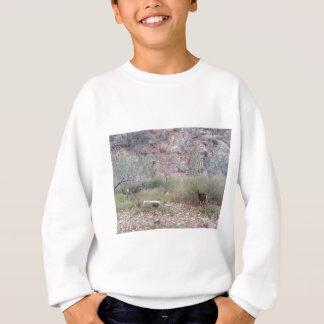 南縁のグランドキャニオンの国立公園の幻影牧場 スウェットシャツ