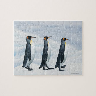 単一ファイルで歩いているキングペンギン ジグソーパズル