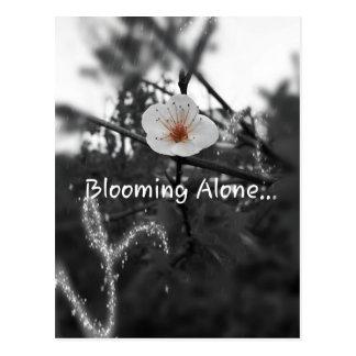 単独で咲くこと ポストカード