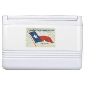 単独星の州のテキサス州TXのヴィンテージ旅行記念品 IGLOOクーラーボックス