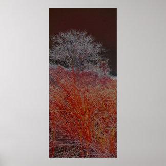 単独木-赤 ポスター