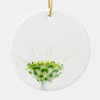 単純化した白い《植物》百日草 陶器製丸型オーナメント