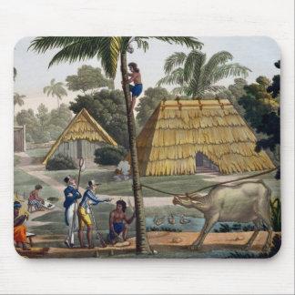 博物学者の質問先住民はKupang、ティモール、pに近づきます マウスパッド