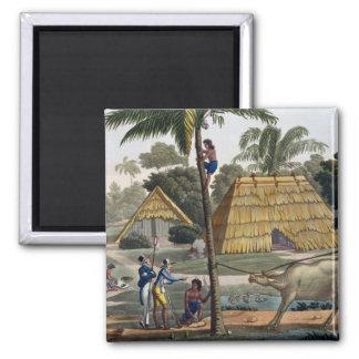 博物学者の質問先住民はKupang、ティモール、pに近づきます 磁石