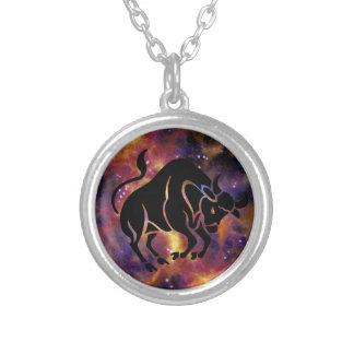 (占星術の)十二宮図のトーラスのネックレス シルバープレートネックレス