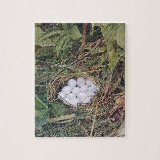 卵の十分のコリンウズラの巣 ジグソーパズル