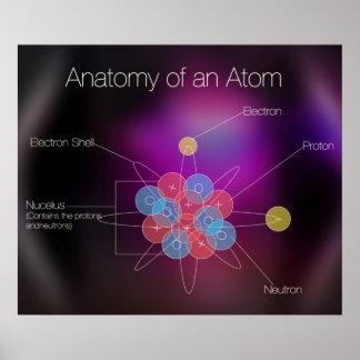 原子ポスターの解剖学 ポスター