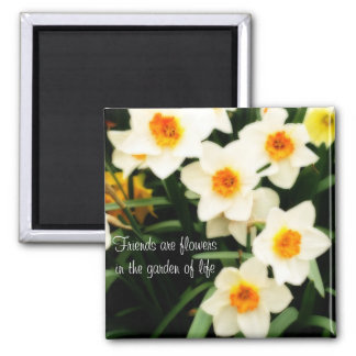 友人は花の引用文のラッパスイセンの磁石です マグネット