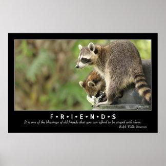 友人及び恵みの友情の引用文のアライグマ48x32 ポスター
