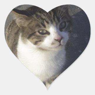 友好的な子ネコ ハートシール