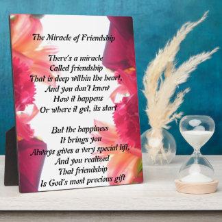 友情のプラクの奇跡 フォトプラーク