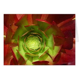 友Vangsgardによる赤いおよび緑のSucculent カード