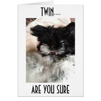 **双生児**混同したHAVANESEはです50信じることができません カード