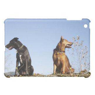 反対の方向を見ている2匹の若い犬 iPad MINIケース