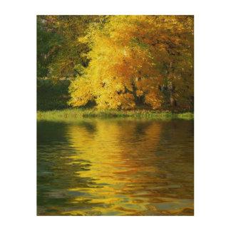 反射の森林の秋の木 ウッドウォールアート