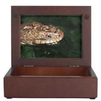 反射の水ヘビ ジュエリーボックス