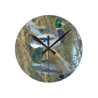 反映されるアヒル ラウンド壁時計