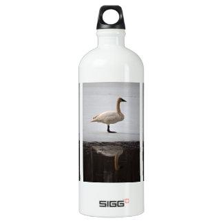 反映される白鳥 ウォーターボトル
