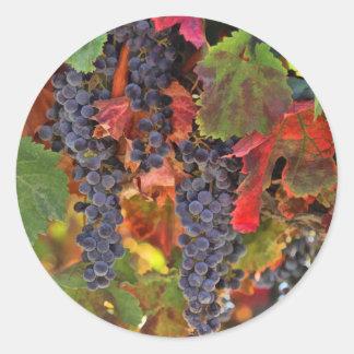 収穫のブドウ園のワインの里のステッカー ラウンドシール