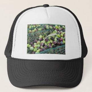 収穫期の間の網のちょうど選ばれたオリーブ キャップ