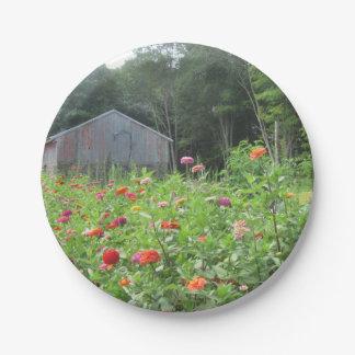 取除かれる国および花の紙皿 ペーパープレート