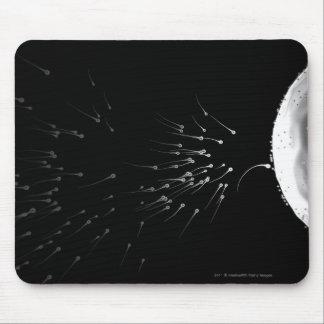 受精の白黒イラストレーション マウスパッド
