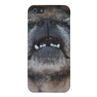 口によってSpeckの開けられる場合を持つパグ犬 iPhone SE/5/5sケース