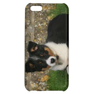 口の葉を持つボーダーコリーの子犬 iPhone5Cカバー