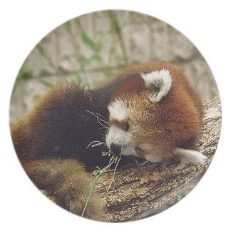 口の食糧を持つかわいい睡眠のレッサーパンダ プレート