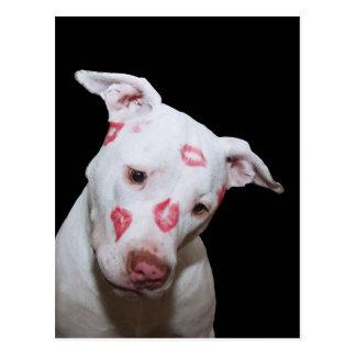口紅のキスと密封される白い小犬愛 ポストカード