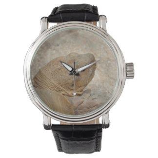 古いカメの上のカメの頭部の終わり 腕時計