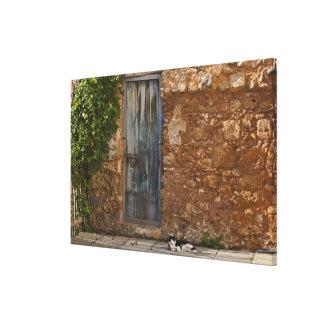 古いドアおよび休息猫 キャンバスプリント