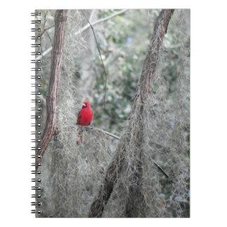 古いフロリダの赤く基本的な写真のノート ノートブック