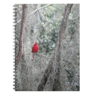 古いフロリダの(鳥)ショウジョウコウカンチョウのノート ノートブック