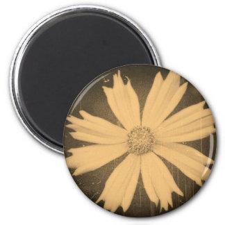 古い写真の黄色の宇宙の花のクローズアップ マグネット
