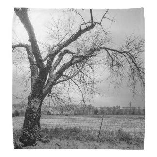 古い冬の木のグレースケール バンダナ